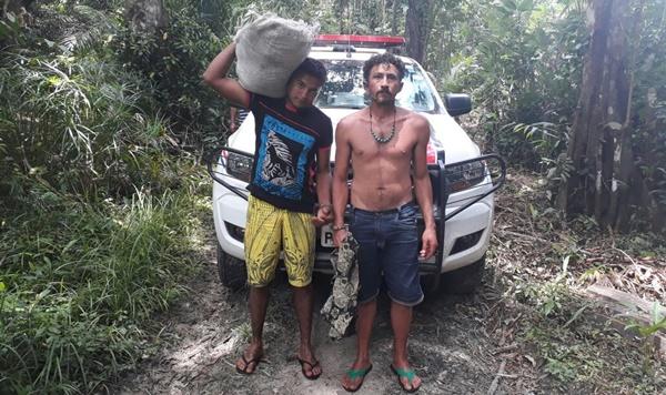 Polícia de Turiaçu prende traficantes e destrói quase 1 mil pés de maconha.